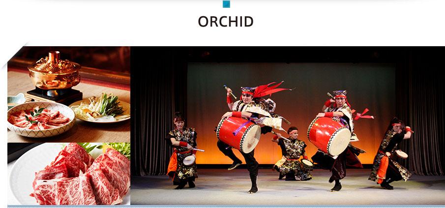 オーキッド 琉球料理